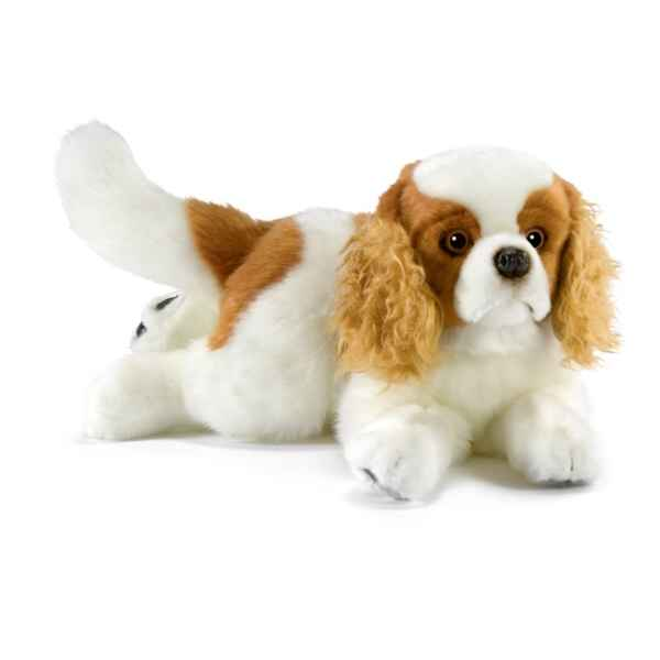 Video Peluche Cavalier King Charles Anima-1656
