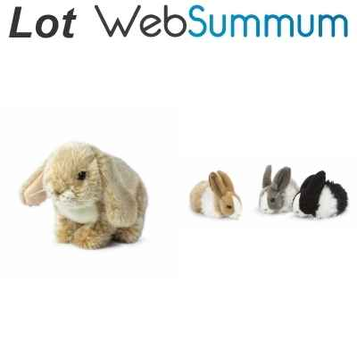 Promotion 2 peluches Lapin Anna Club Plush -LWS-248