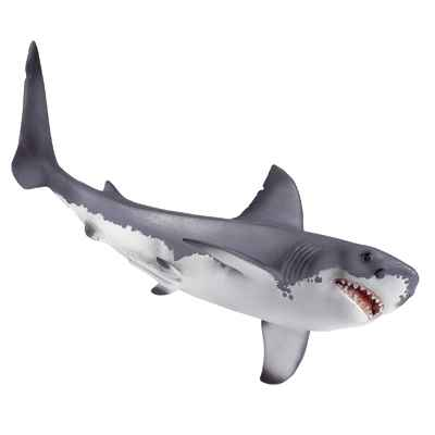 Video schleich-16092-Requin blanc echelle 1:32