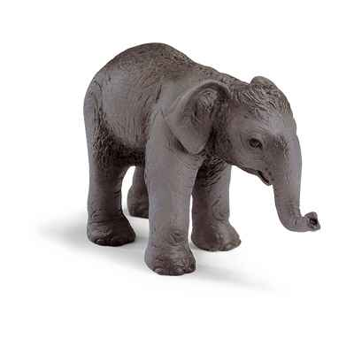 Video schleich-14343-Figurine bebe Elephant de l'Inde
