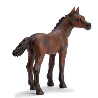 Video schleich-13276-Poulain Arabe